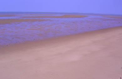 North Eastham Cape Cod vacation rental - Bay Beach just a short stroll away - summer!