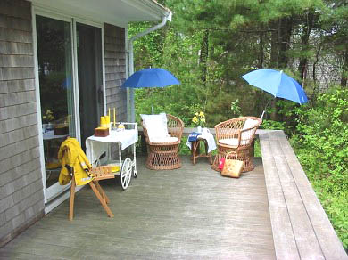 Pocasset (Wings Neck) Pocasset vacation rental - Sit comfortably on the deck and plan your day
