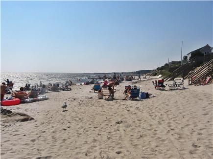 Harwichport, south of Route 28 Cape Cod vacation rental - Easy stroll to town & the warm waters of Nantucket Sound Beach
