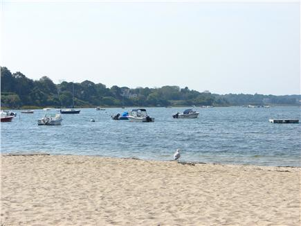Chatham Cape Cod vacation rental - Enjoy the convenience and beauty of Oyster Pond - 5 minutes away!