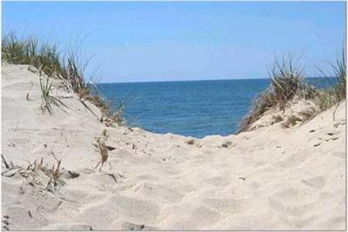 Wellfleet  Cape Cod vacation rental - Wellfleet's National Seashore just a mile away