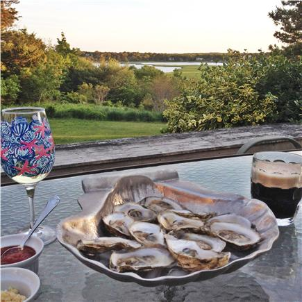 East Orleans Cape Cod vacation rental - Wellfleet oysters, anyone?