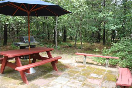 North Eastham Cape Cod vacation rental - Back patio off porch. Gas grill. Spacious, private back yard.