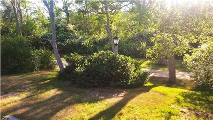 Wellfleet Cape Cod vacation rental - The view towards the Estuary from the front of the cottage