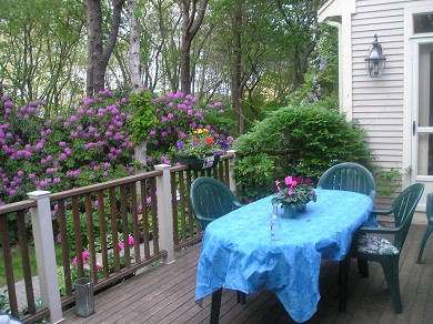 Harwich Cape Cod vacation rental - Huge deck for entertaining