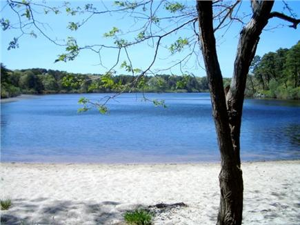 Brewster, Blueberry Pond Cape Cod vacation rental - Sandy beach at south pond end.