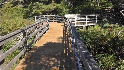 South Wellfleet Cape Cod vacation rental - Walkway between cottages, which runs around pond too!