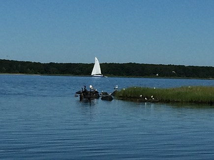 Falmouth, Waquoit Bay Cape Cod vacation rental - Where Waquoit bay meets Little River