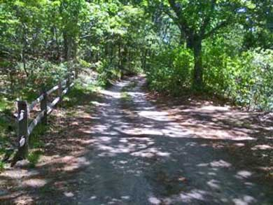 'The Back Woods,'  Wellfleet Cape Cod vacation rental - Sand road past 7 ponds to the beach.