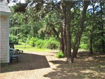 Chatham Cape Cod vacation rental - Side yard also abutting conservation land.
