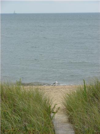 Popponesset Beach - Mashpee Cape Cod vacation rental - Enjoy Popponesset Beach-the comforts of home just steps away