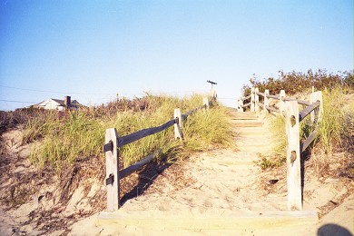 North Eastham Cape Cod vacation rental - Path leading from one of the private beaches