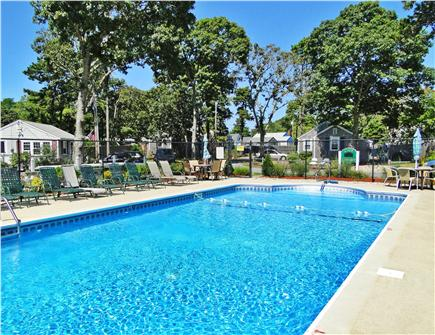 Dennisport Cape Cod vacation rental - Sun drenched pool just steps from the cottage
