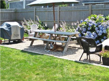Sandwich, Town Neck Beach and Boardwalk Cape Cod vacation rental - Spacious back yard with gas grill and picnic seating