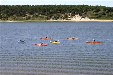Chequessett Neck Wellfleet Cape Cod vacation rental - Guided nature tour floats by and the water is great for swimming
