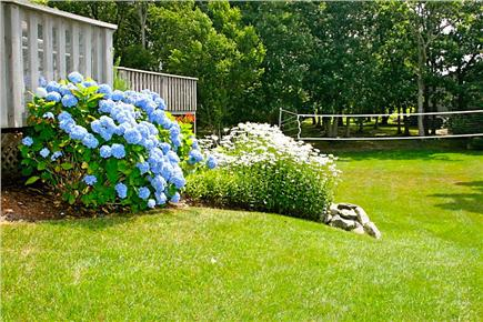 Harwichport Cape Cod vacation rental - Enjoy a picturesque atmosphere while the kids play volleyball.