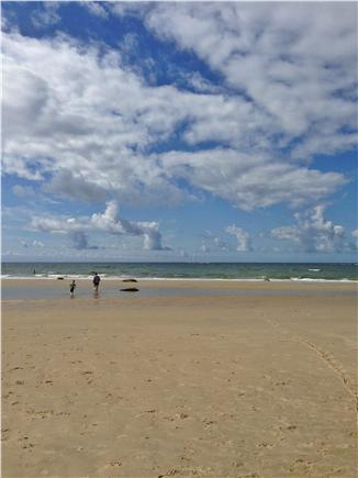 Brewster Cape Cod vacation rental - Sea Street Beach at low tide- our six year olds favorite!