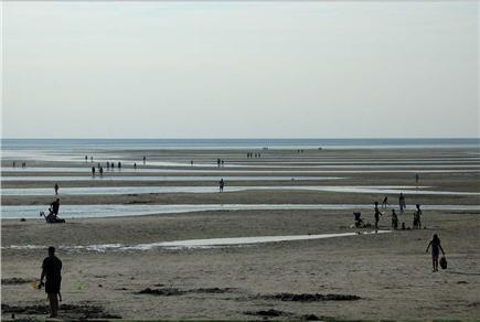 Orleans Cape Cod vacation rental - Skaket  Beach is just 2.5 miles away