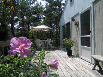 Truro Cape Cod vacation rental - Truro Vacation Rental ID 14928
