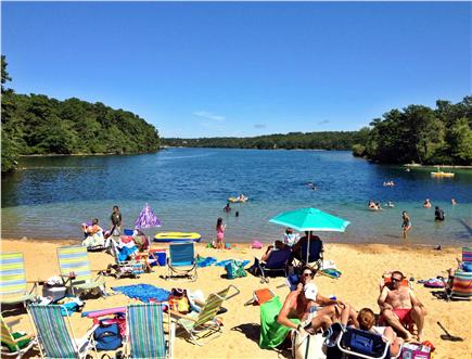 Brewster Cape Cod vacation rental - Sheep Pond's sandy beach is just steps away