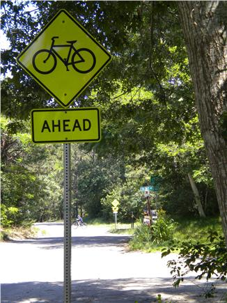 Eastham, Great Pond Area Cape Cod vacation rental - Paved rail trail-CCRT-a stone's throw away - view from our drive
