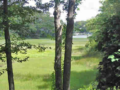New Seabury, Mashpee New Seabury vacation rental - Beautiful view of Ockway Bay and salt water marsh from back yard.
