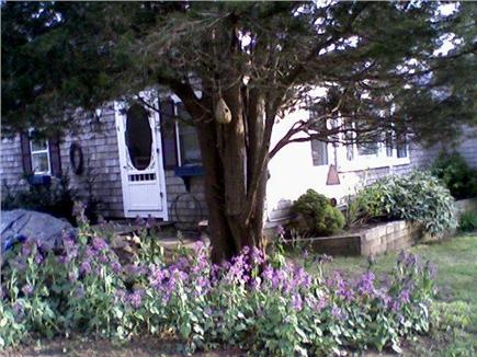 Harwich Cape Cod vacation rental - Gardens