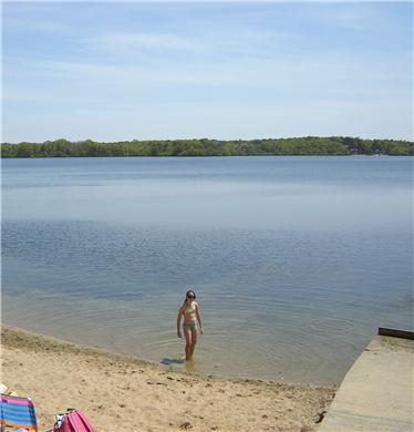 Brewster Cape Cod vacation rental - Wade ~100 yards to the sandy neighborhood association beach
