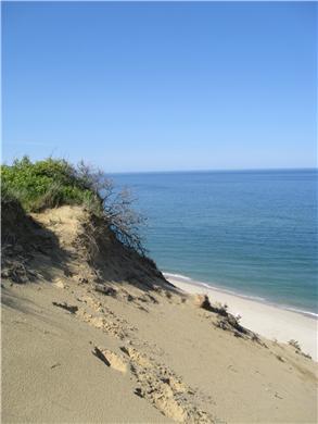 Wellfleet, Oceanfront Nat'l Seashore dune Cape Cod vacation rental - Beach from dune's edge