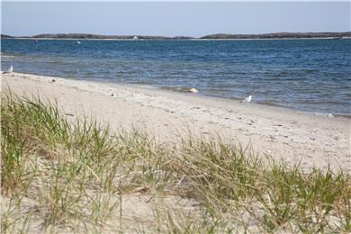 West Yarmouth Cape Cod vacation rental - The beach is right out your back door