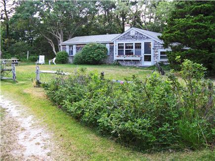 Eastham Cape Cod vacation rental - Yard