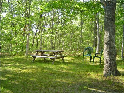East Harwich Cape Cod vacation rental - Backyard