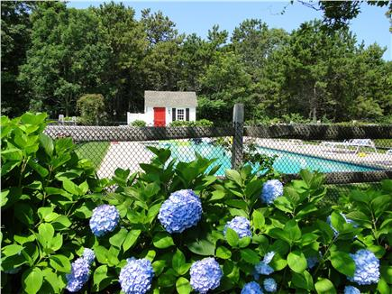 Dennis Port Cape Cod vacation rental - 20 X 40 inground gunite heated pool with hot tub heated to 102