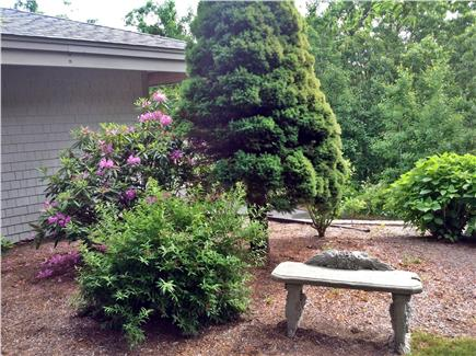 Truro Cape Cod vacation rental - The grounds