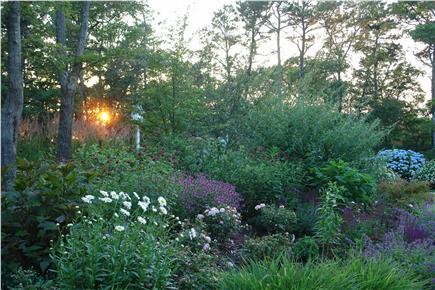 Brewster Cape Cod vacation rental - Gardens