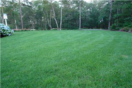 Brewster Cape Cod vacation rental - Big green front lawn