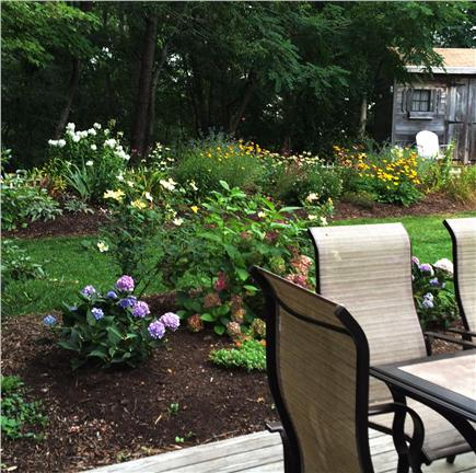 Orleans Cape Cod vacation rental - View from the deck