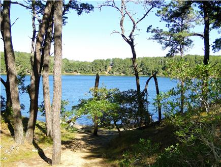 Chatham Cape Cod vacation rental - Direct access to swim, relax or fish in crystal clear Goose Pond