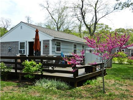 North Eastham Cape Cod vacation rental - Large sunny deck