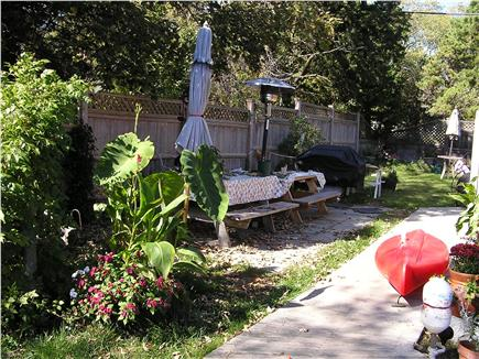 Eastham Cape Cod vacation rental - Side yard plush greenery
