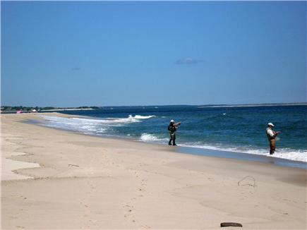 Chatham Cape Cod vacation rental - Enjoy a Warm Summer's Day Your Way . . .