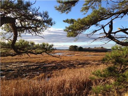 North Eastham Cape Cod vacation rental - Audubon Wildlife Santuary. Explore the Outer Cape!