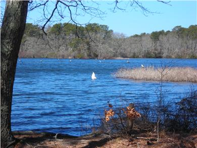 South Dennis Cape Cod vacation rental - Short Drive or Bike To Bell's Neck Conservation Area