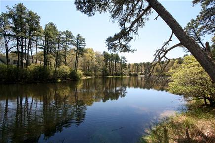 Orleans Cape Cod vacation rental - Uncle Israel Pond