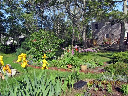 Chatham Cape Cod vacation rental - Enjoy the space and the hammock!