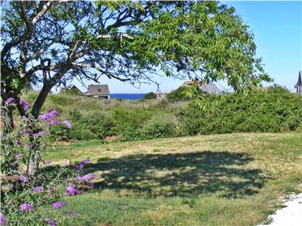 TRURO Cape Cod vacation rental - View from the Front Yard