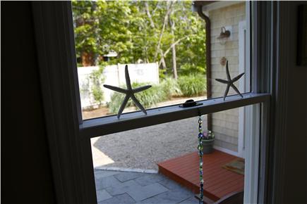 Eastham Cape Cod vacation rental - Starfish enjoying Cape Cod