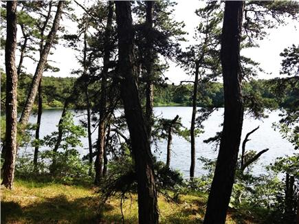 Wellfleet Cape Cod vacation rental - Take a walk through the woods to secluded Dyer Pond