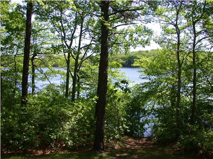 Brewster Cape Cod vacation rental - Pond view from back step