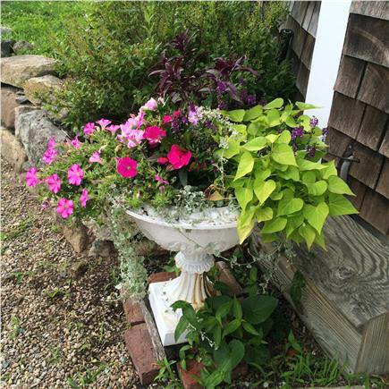 Eastham Cape Cod vacation rental - We love our vacationers !